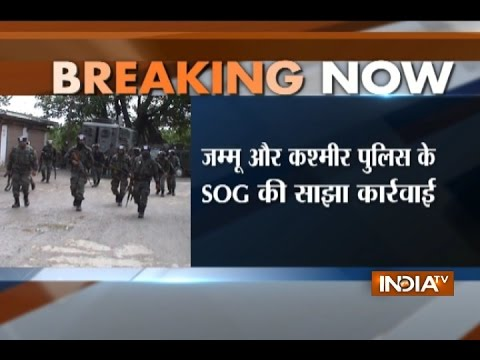 Massive Search Operation starts in Jammu and Kashmir's Shopian