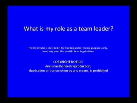 team leader apprenticeship pareto co uk