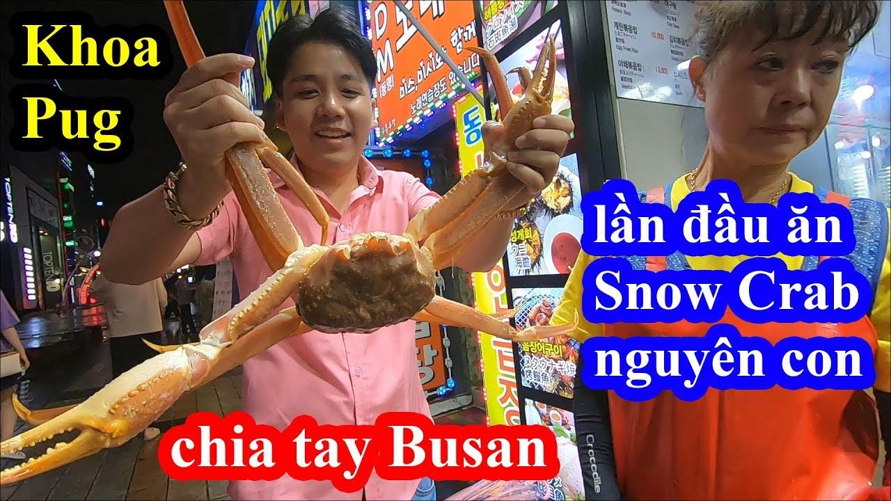 Snow Crab Busan – Khoa Pug vào nhà hàng hải sản trung tâm ăn Cua Tuyết xem thử có bị chặt chém không