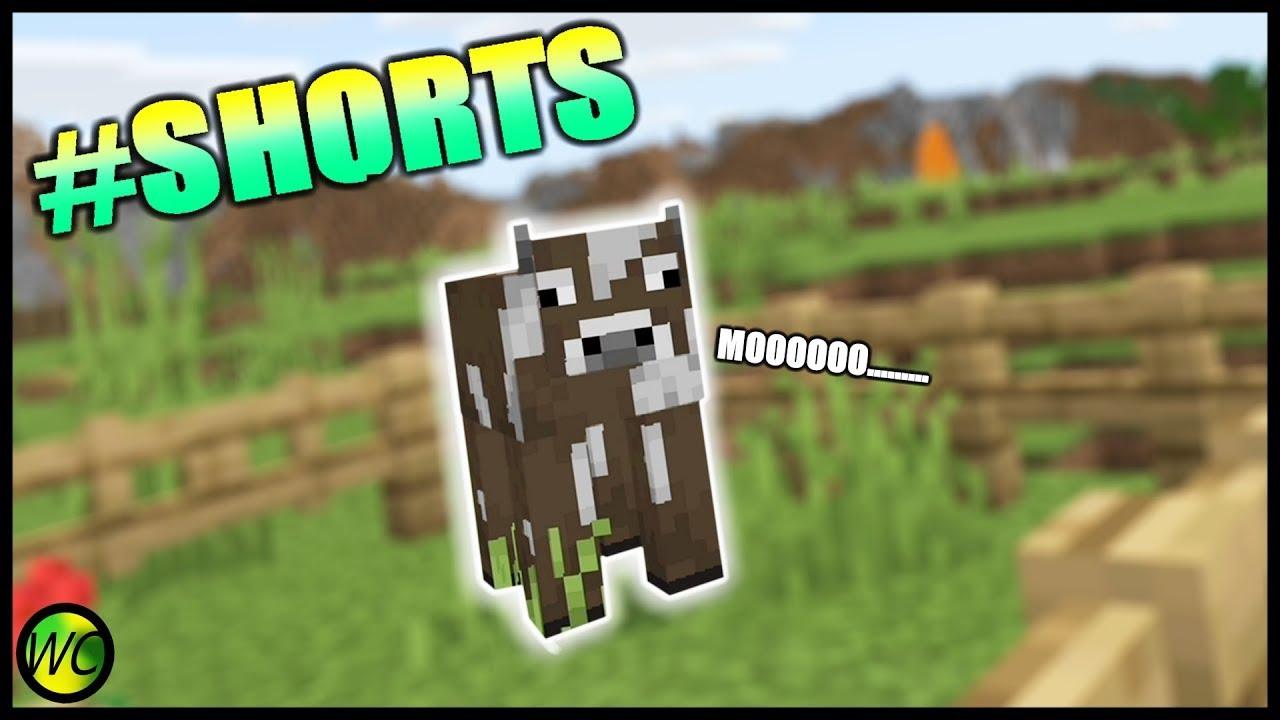 Minecraft Bedrock Edition VR Shorts YouTube