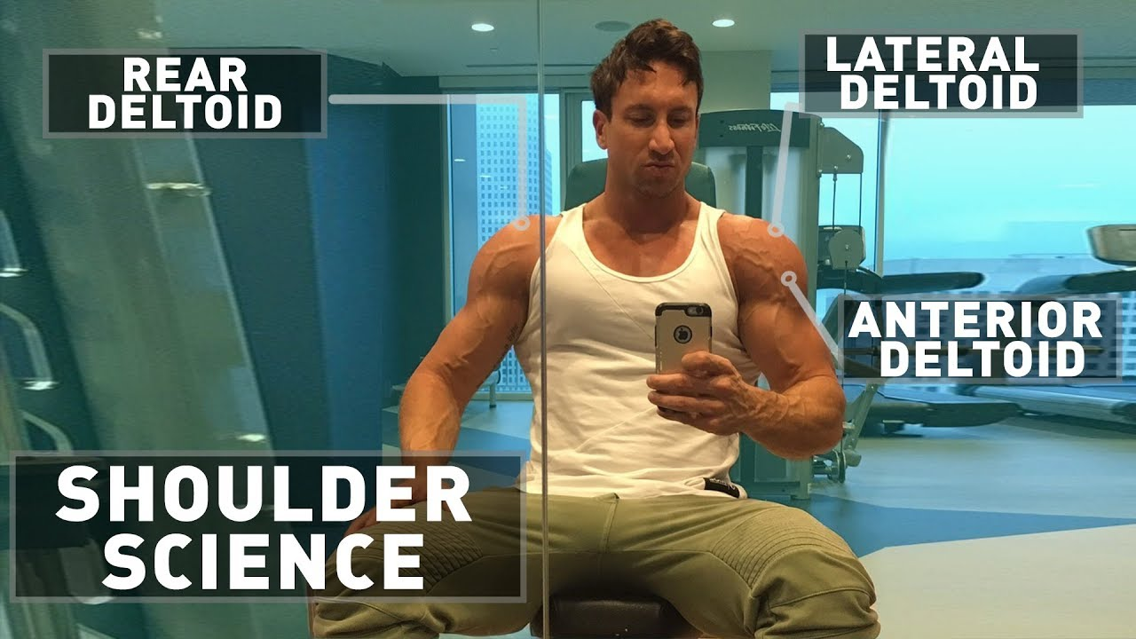 f56e46eee22 4 Best Shoulder Exercises In The World!