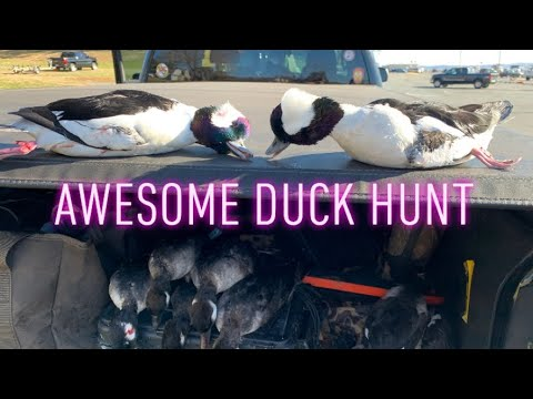 FIRST DUCK HUNT OF THE SEASON (Harford County Maryland)