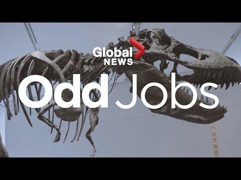 Odd Jobs: Dinosaur sculptor
