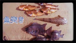 9月10日(日曜日) ひとり魚突き.