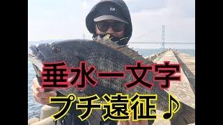fishingmax 泉大津 垂水一文字へプチ遠征♪ thumbnail