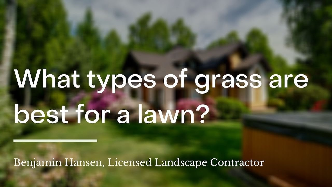 4 Ways To Get Green Grass Wikihow Life