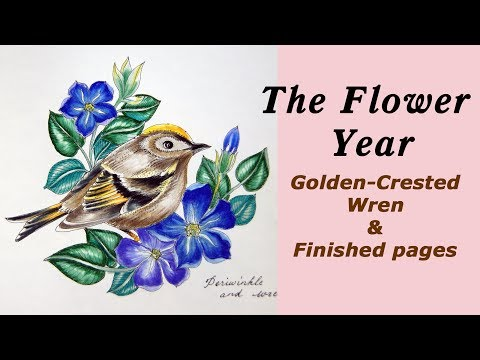 Coloring book 'The Flower Year' Golden-Crested Wren & Finished pages
