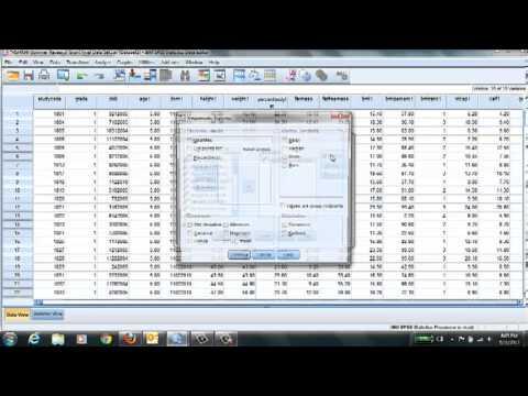 SPSS & Descriptive Statistics
