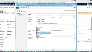 CRM 2013 Floating Point Number and Decimal Numbers