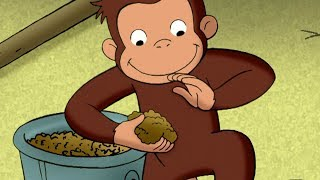 Curious George The Truth About George's Burger Kids Cartoon  Kids Movies Videos for Kids