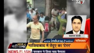 People of Ghaziabad in terror after they spotted Leopard on road