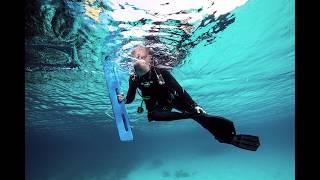 Advanced Underwater Photography Course - Utila Dive Center - Nicole Webster