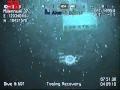 Gulf of Mexico sea monster / Extraña Criatura en el Golfo de México