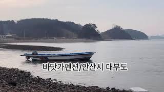 바닷가 팬션펜션매매/안산시 대부도