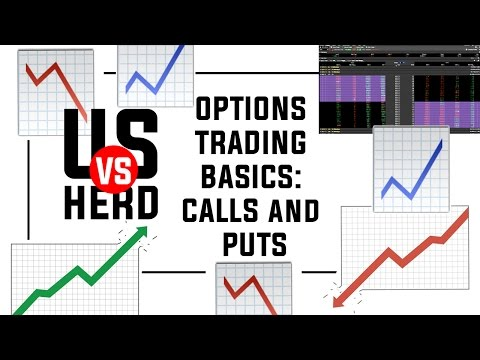 Options Trading Basics: Calls and Puts Explained