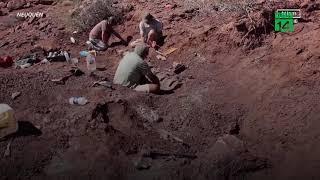 Phát hiện hóa thạch của loài khủng long lớn nhất thế giới | VTC14