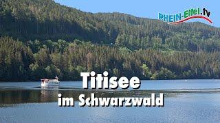 Https://www.rhein-eifel.tv - denkt man an den schwarzwald, so fallen einem die begriffe bollenhut, kuckucksuhr, schinken und kirschtorte sofort ein. fragt ma...