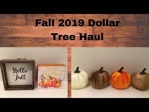 Fall 2019 Dollar Tree Haul & Why I've Been Gone