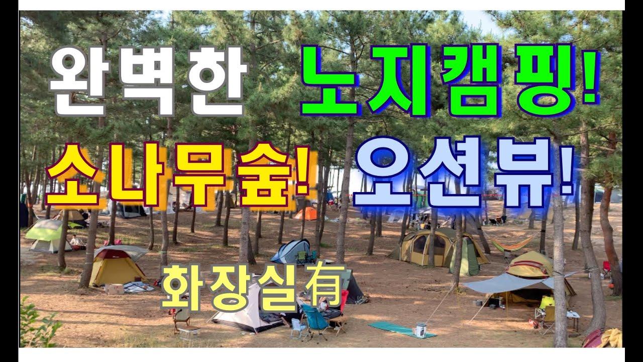 [노지캠핑]이 처음이라면 여기부터! | 오션뷰 캠핑/향호해변/청시행비치/강릉 주문진해수욕장/캠핑용품/주문진항 풍물시장/Camping