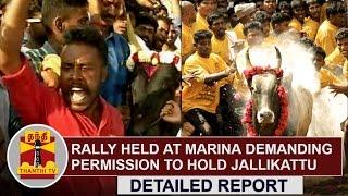 Rally held at Chennai Marina Beach demanding permission to hold Jallikattu | Thanthi TV