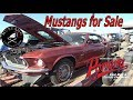 Mach 1, Fastback, Boss Mustangs for Sale @Pomona Swap Meet October 2017 Mustang Connection