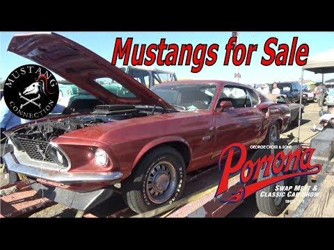 Mustang swap meet