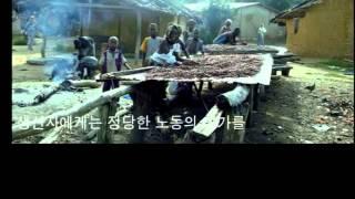 공정무역 착한초콜릿(한국공정무역연합)
