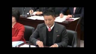2015 3 4参議院・国の統治機構調査会・参考人質疑