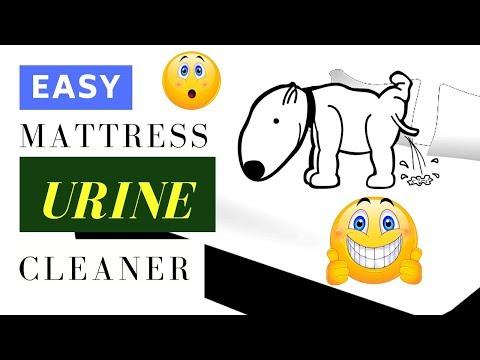 Easy Mattress Urine Cleaner