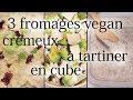 3 recettes de fromage sans lait maison ! (recettes vegan Waaaou !)