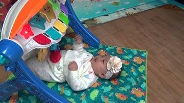 피셔프라이스 클래식 아기 체육관