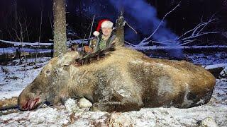 Охота на лося закрытие сезона