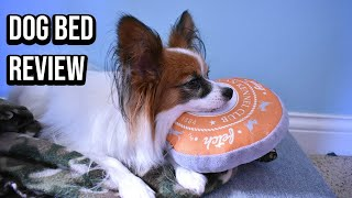 Dog Bed Review (With Bloopers) / Percy the Papillon