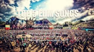 Top 5 EDM Songs 2014
