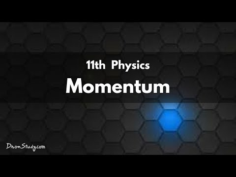 Momentum for IIT-JEE Physics   CBSE Class 11 XI   Video Lecture in Hindi