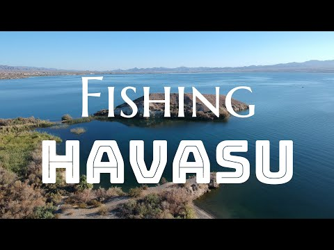 Fishing in Havasu