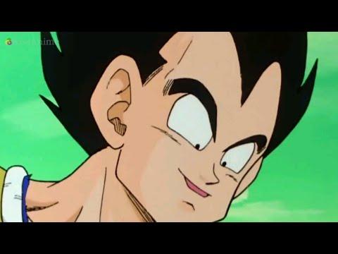 Pedo Vegeta Dragon Ball Z Kai (English Dub)