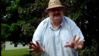GIANT Fancy Fortune Cookie - Drew Wohlford - Taste Test