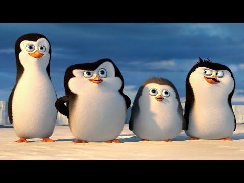 Пингвины мадагаскара мультфильм пингвины антарктики