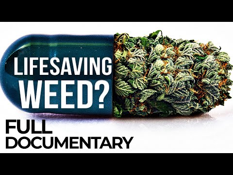 Cannabis to Save my Life: A Woman's Fight for Medical Marijuana | ENDEVR Documentary