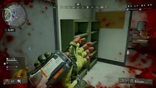 Call of Duty®: Black Ops 4_20181128203221
