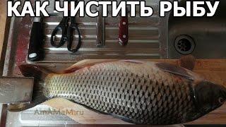 Как чистить рыбу правильно. Совет от Ивана!