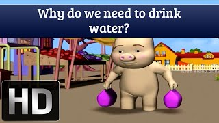 why do we need to drink water? - Kids Video Show