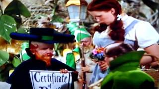 Wizard Of Oz Munchkin Coroner