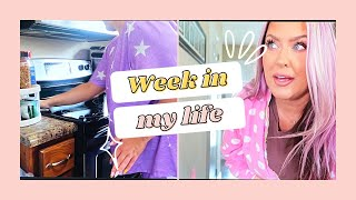 Week in my life   Aldi and Dollar Tree Haul   Clean with me   ADHD CLEANING   HOTMESS MOMMA MD