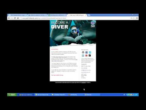 EVE Agent   How to Set Up a New EVE Agent Auto Email Campaign Using MailChimp