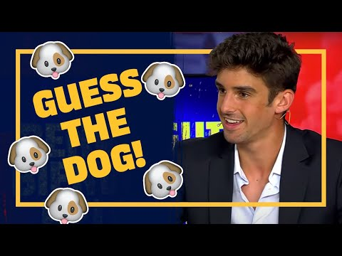 🐶 Can TRINCÃO match the BARÇA PLAYERS with their dogs?! ❓