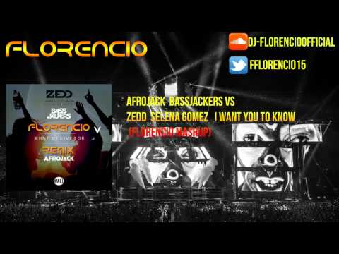 Afrojack  Bassjackers vs Zedd  Selena Gomez What We  To Know  (Hardwell Mashup) [Florencio Remake]