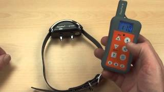 Ep 380r 1000m Remote Training System- Train Up To 3 Dogs