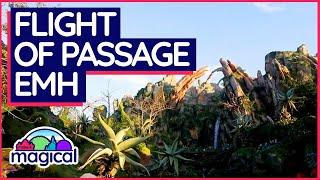 Flight of Passage   Extra Magic Hours   Disney's Animal Kingdom 2019